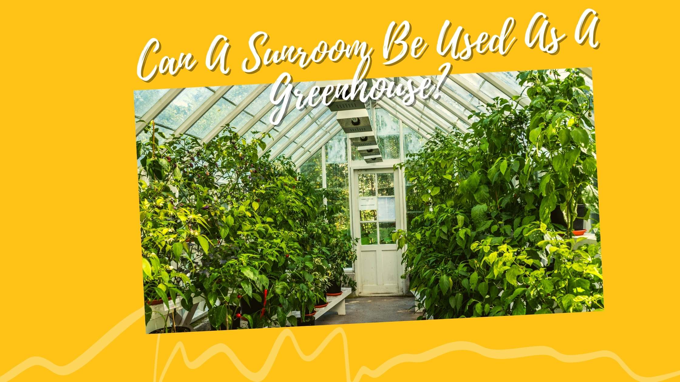 Can A Sunroom Be Used As A Greenhouse